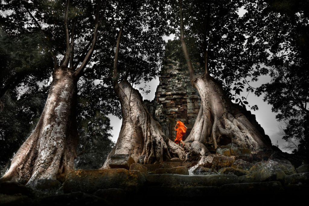 Templos Angkor, Phnom Penh y playas