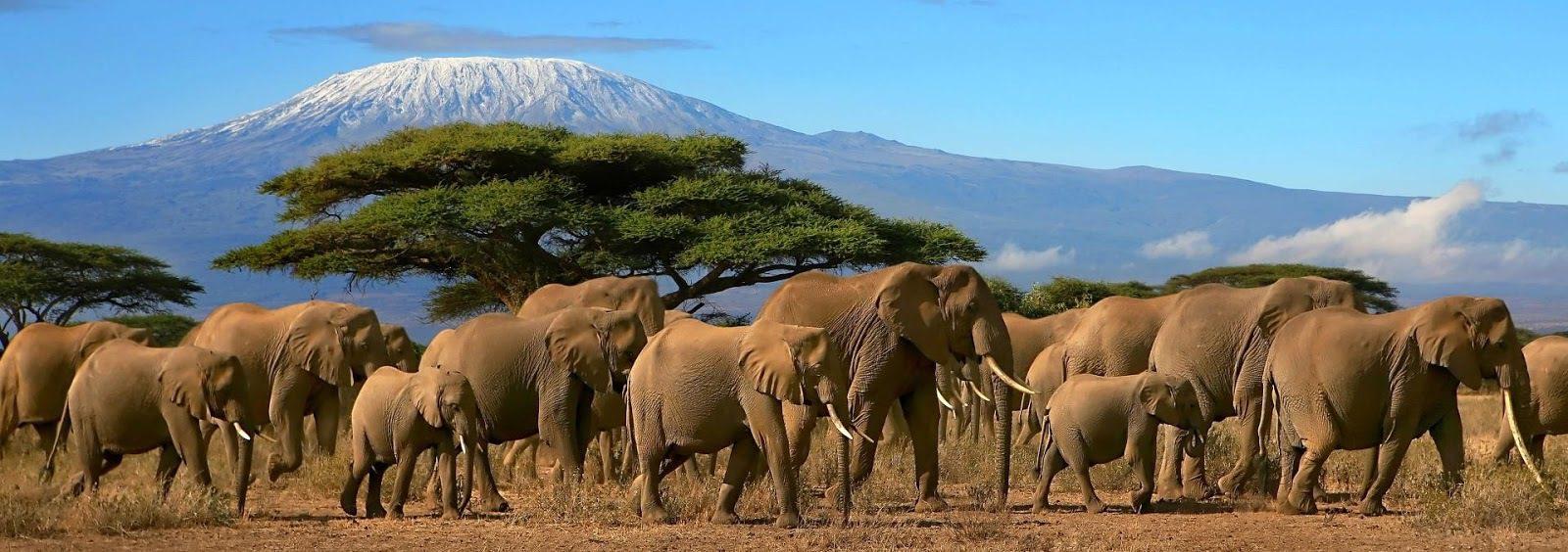 Tanzania con Postcardtravel