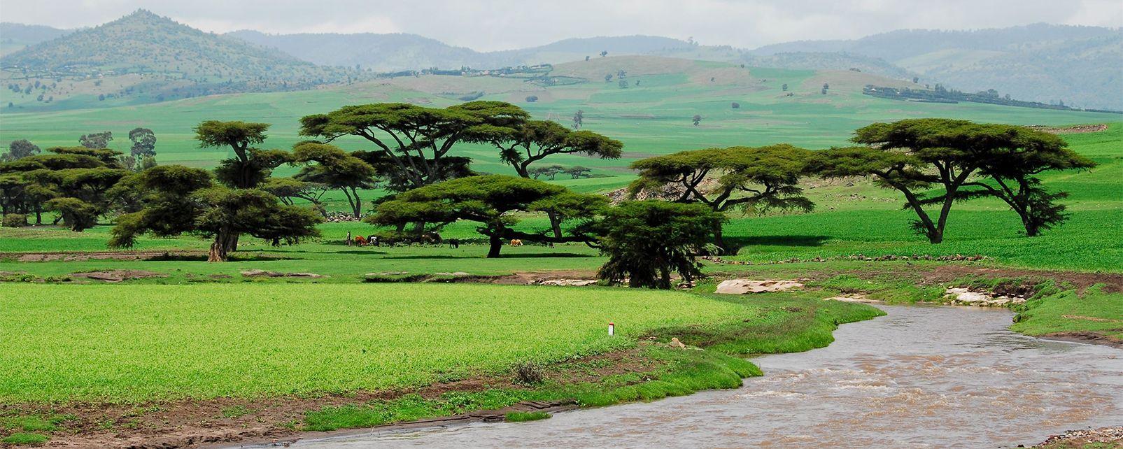 Etiopía con Postcardtravel
