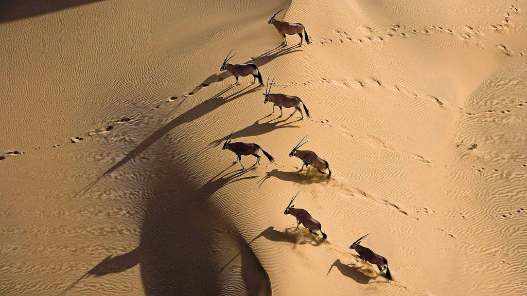 Namibia escénica